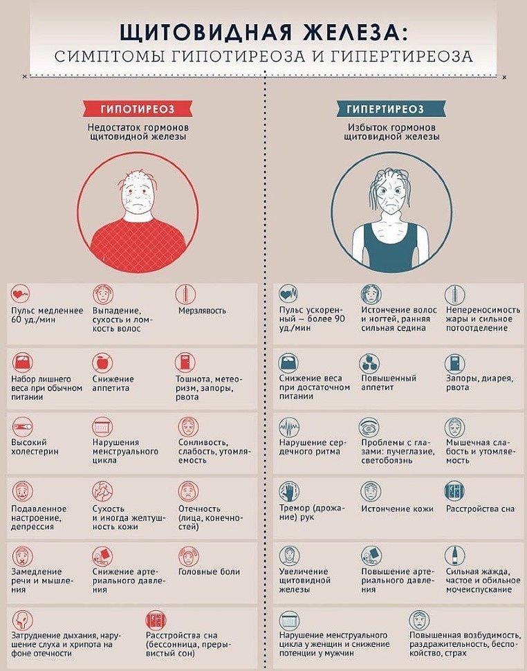 Симптомы Гипертиреоза и Гипотиреоза: факты о щитовидной железе, диагностика и лечение